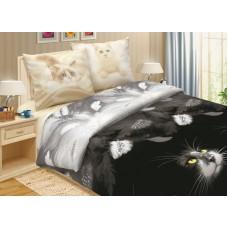 Комплект постельного белья Кошки