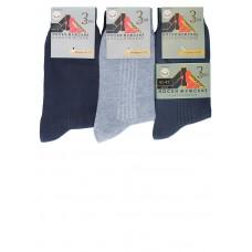 Носки мужские демисезонные М015